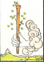 Tarot Karte As der Stäbe
