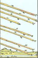 Tarot Karte Acht Stäbe