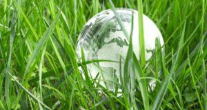 green earth concept - Erdkugel zwischen frischen Grashalmen