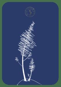 Lenormand der Baum
