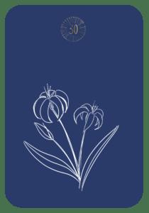 Lenormand die Lilie